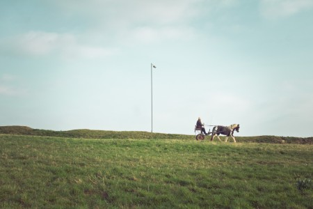 of man, his horse, and a street light